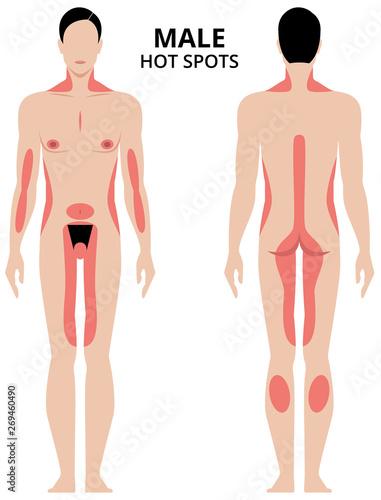 Photo Vector illustration of male erogenous zones
