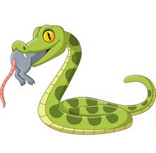 Cartoon Green Snake Eating A M...