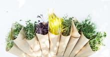 Vegetarian Concept: Healthy Mi...
