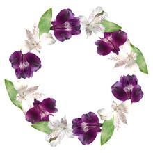Beautiful Floral Circle Of Whi...