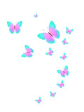 tropical flock of flying colored butterflies isolated on white