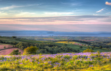 Quantock Hills Somerset Towards Hinkley Point Nuclear Power Station With Bluebell Flowers In Colourful HDR Like A Painting