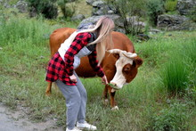 Blond Girl In A Red Checkered Shirt Feeds A Horned Cow A Green Grass.