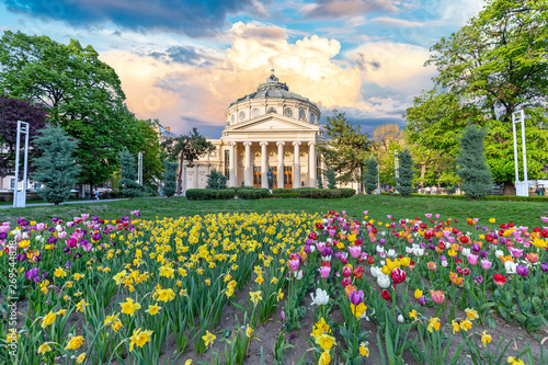 Romanian Atheneum at sunset with red and yellow flowers in front Canvas Print
