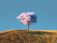 Tree With A Fluffy Cloud In Th...