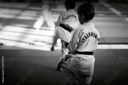 Obrazy Taekwondo   obraz-na-plotnie-martial-arts-a-young-man-in-a-white-kimano-with-a-green-belt-demonstrates-taekwondo-tuli-black-and-white-image-for-web-and-printing