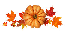 Round Pumpkin With Autumn Colorful Leaves