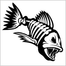 Fish Skeleton On White. Vector...