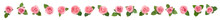 Set Of Beautiful Tender Pink Roses With Leaves On White Background, Top View. Banner Design