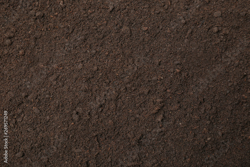 Textured ground surface as background, top view. Fertile soil