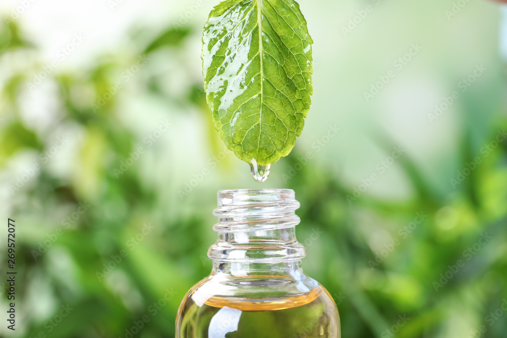 Fototapeta Essential oil dripping from mint leaf into glass bottle on blurred background, closeup