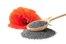 Composition With Poppy Seeds And Flower On White Background