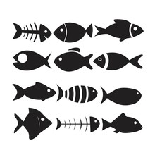 Fish Icon Set Isolated On White Background