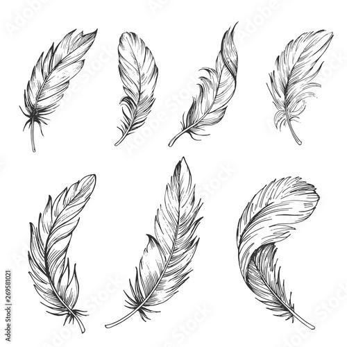 Set of bird feathers Tableau sur Toile