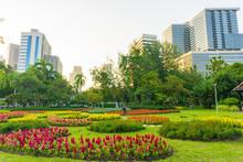 City Public Park With Modern B...