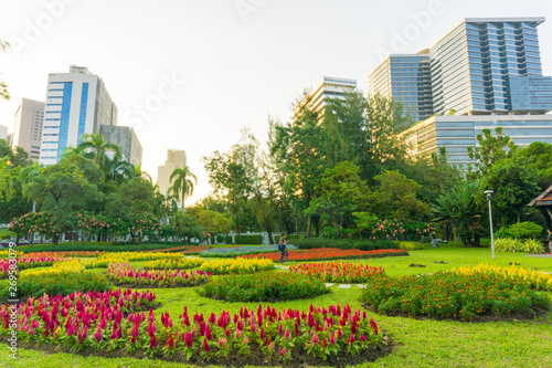City public park with modern building Lumpini park Tablou Canvas