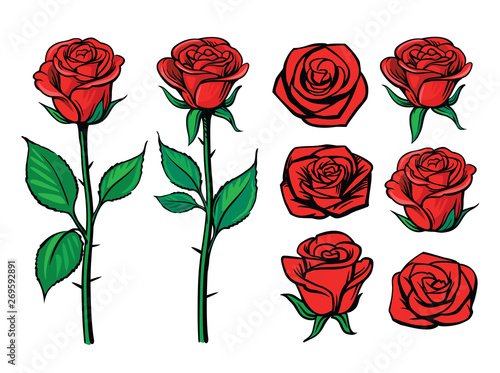 Rose flower set. Floral decoration, valentine greeting card Canvas Print