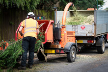 Male Arborist Using A Working ...