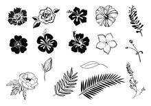 Flowers Hibiscus, Plumeria, Rose, Anemone Silhouette Black And White, Isolated.
