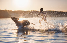 A Boy Runs With The Dog In The Lake, Splashing The Water Around. Playful, Happy Childhood Moments. The Silhouette Is Reflecting On The Water. Beautiful Sunny Summer Day.