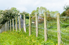 Barbed Wire Fence And Posts In A Field In Ireland