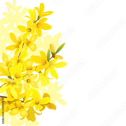 Stampa su Tela Fluffy blossoming yellow spring tree template