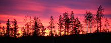 Colorful Sunset Over Lapland In Northern Sweden
