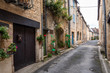 Rustic village street of Montignac
