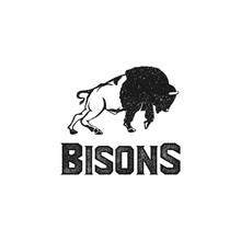 Bisons Logo Inspiration