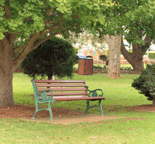 Park Bench Under Tree, Green Grass And Trees