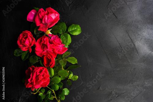 Staande foto Bloemen Floral frame concept