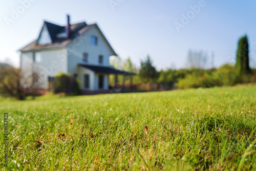 Cuadros en Lienzo cottage house and young lawn