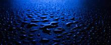 Wet Asphalt, Night Scene Of An...