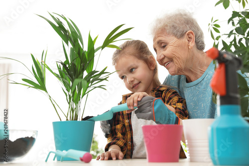 Poster Ecole de Danse Little girl and her grandmother taking care of plants indoors