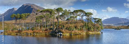 Foto auf Leinwand Texturen Landscape with lake in Galway county, Ireland