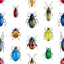 Beautiful Set Of Drawing Seamless Pattern Of Multicolored Bright Beetles. Isolated On White Background. Watercolor Illustration For Design, Packaging, Product, Fabric, Website, Print, Poster.