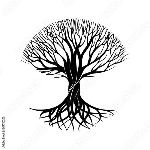 Fototapeta Tree silhouette circle symbol, sign, logo, emblem, icon. Hand drawn tree stylized, vector illustration. obraz na płótnie