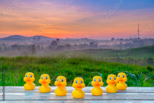 Canvas Prints River, lake Plastic yellow duck toy in a formation during beautiful sunrise.