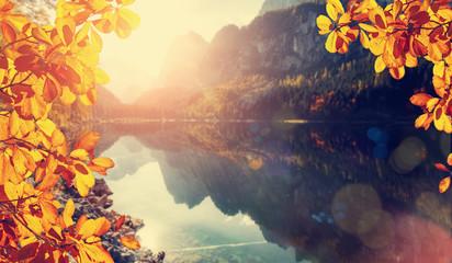Fototapeta Rzeki i Jeziora Wonderful Autumn landscape. colorful leafes under sunlit. incredible alpine lake Gosausee with turquoise water in Austrian Alps and Dachstein Mountain is blurred. Amazing Autumn Background
