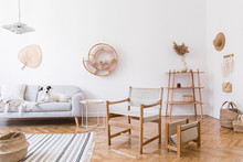 Stylish And Cozy Interior Of Living Room With Elegant Rattan Accessories, Design Armchair, Gray Sofa With Lying Dog And Wooden Shelf. Korean Style Of Home Decor. Hanging Rattan Snail With Airplants.