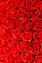 Rose Floral Arrangment