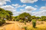 Fototapeta Sawanna - Safari road in Kenya