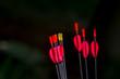archery arrows on a black background