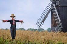 Scarecrow In Front Of Wooden T...