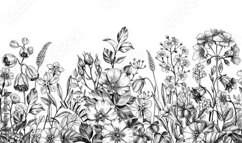 Dzikie rośliny i kwiaty bez szwu granicy