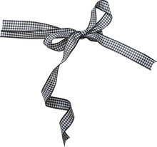 Black Check Ribbon Curl Isolated On White Background. Black Plaid Ribbon Bow And Curl Isolated On White Background