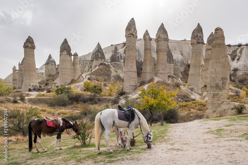 Valokuva  Horses with famous rock formations at background in Love valley, Cappadocia