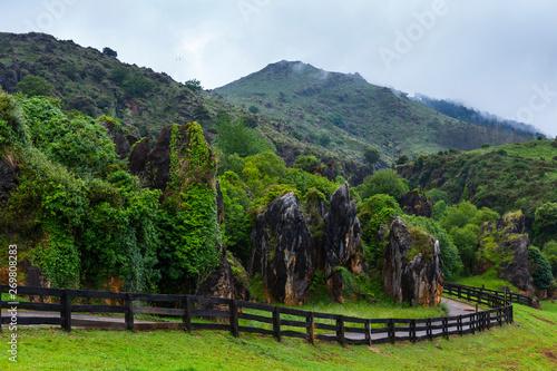 Natural Park of Macizo de Peña Cabarga, Cantabria, Spain, Europe