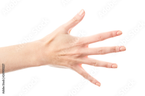 Female hand isolated on white background Tablou Canvas