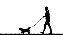 Silhouette Of A Dog And  Girl   On  White Background